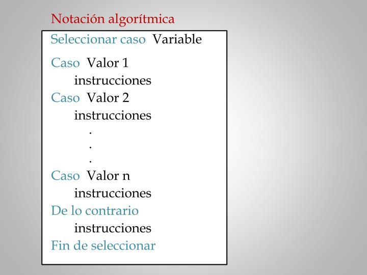 Notación algorítmica