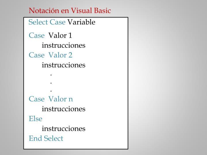 Notación en Visual Basic