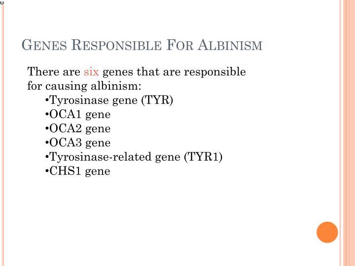 Genes Responsible For Albinism