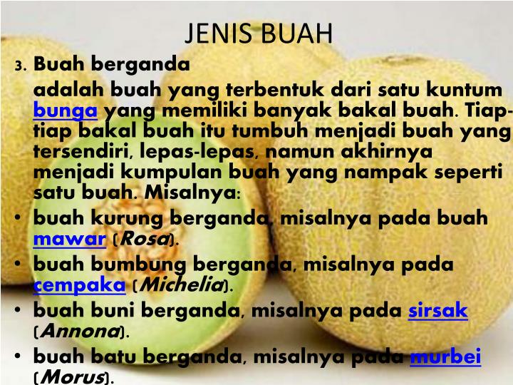 JENIS BUAH