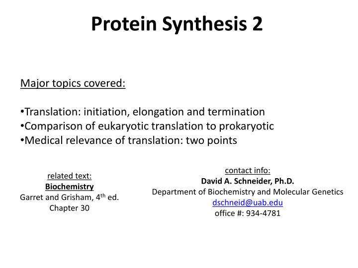 Protein Synthesis 2