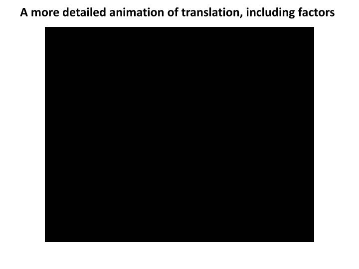 A more detailed animation of translation, including factors