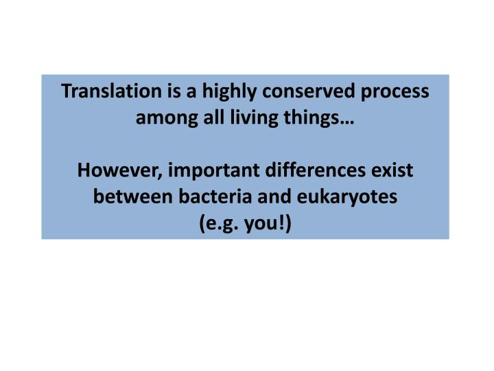 Translation is a highly conserved process among all living things…