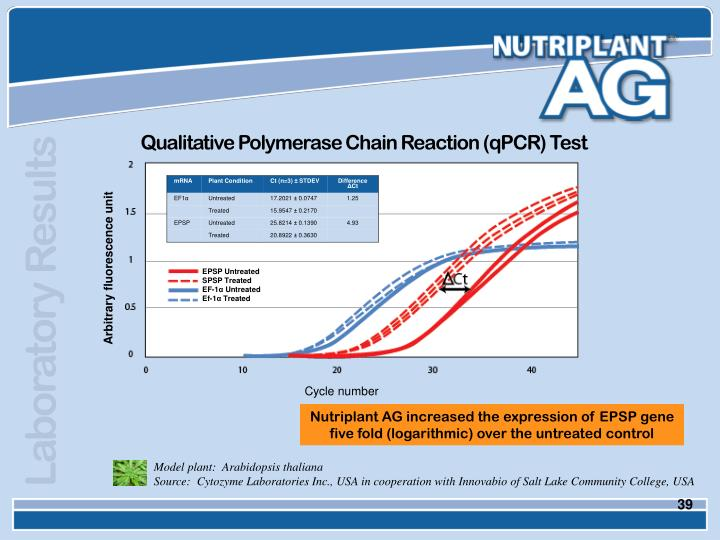 Qualitative Polymerase Chain Reaction (