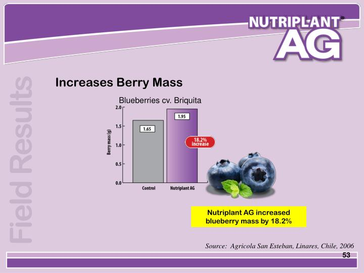 Increases Berry Mass