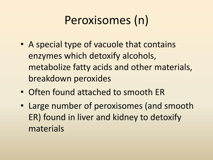 Peroxisomes (n)