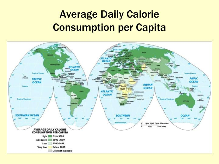 Average Daily Calorie