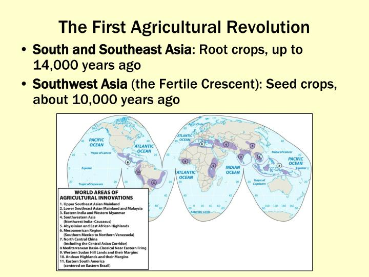 The First Agricultural Revolution