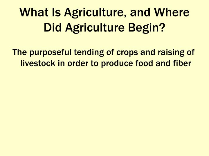What is agriculture and where did agriculture begin