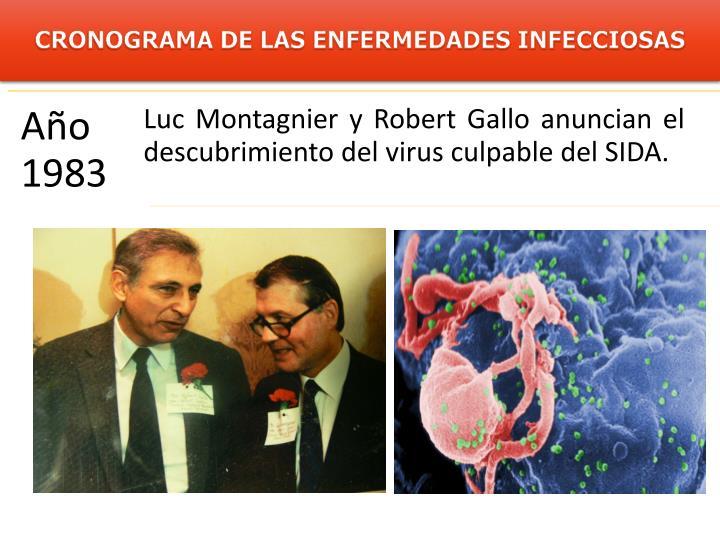 CRONOGRAMA DE LAS ENFERMEDADES INFECCIOSAS
