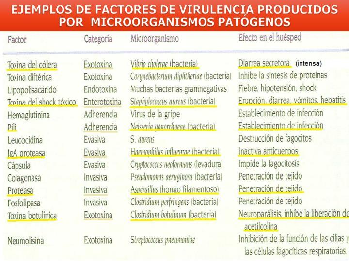 EJEMPLOS DE FACTORES DE VIRULENCIA PRODUCIDOS POR  MICROORGANISMOS PATÓGENOS