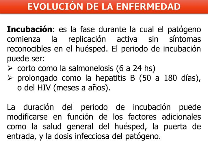 Incubación