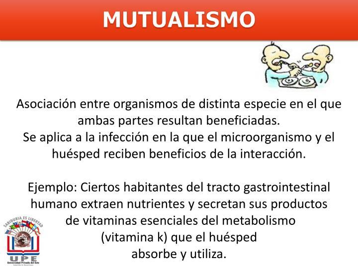 MUTUALISMO