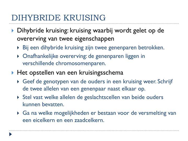 dihybride