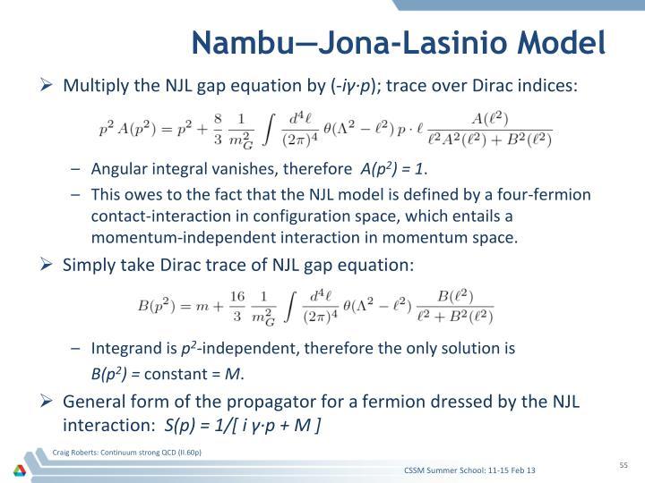 Nambu—Jona-Lasinio