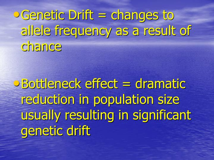 Genetic Drift = changes to allele frequency as a result of