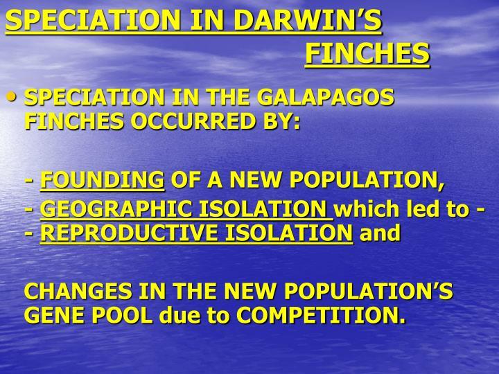 SPECIATION IN DARWIN'S