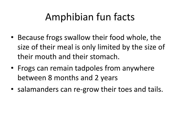 Amphibian fun facts