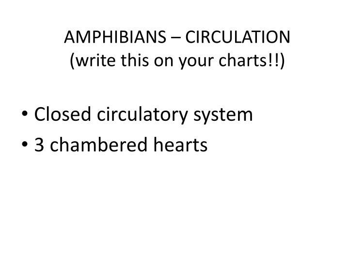 AMPHIBIANS – CIRCULATION