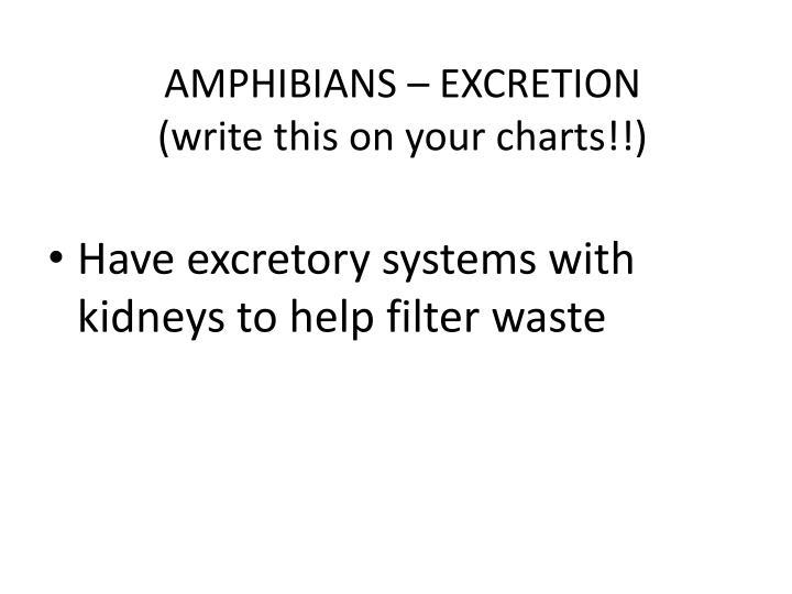 AMPHIBIANS – EXCRETION