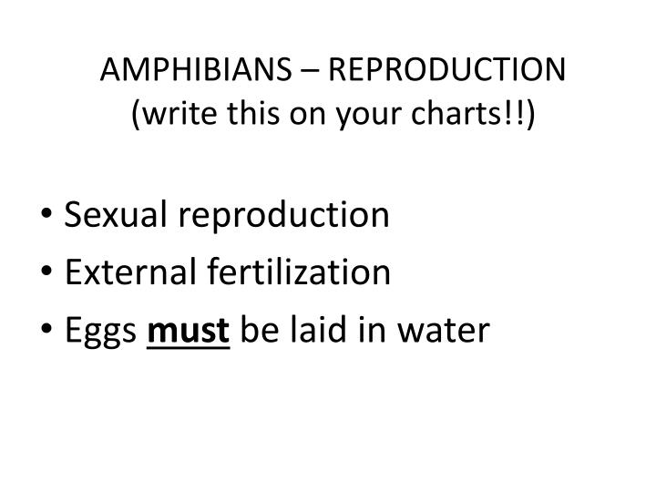 AMPHIBIANS – REPRODUCTION
