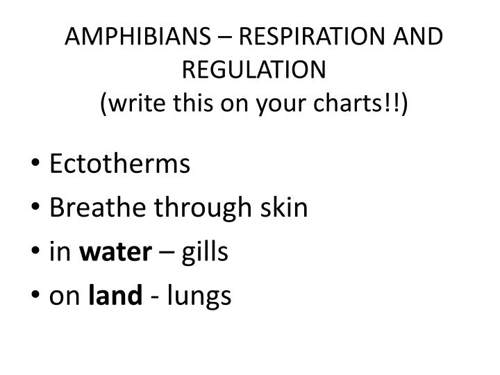 AMPHIBIANS – RESPIRATION AND REGULATION