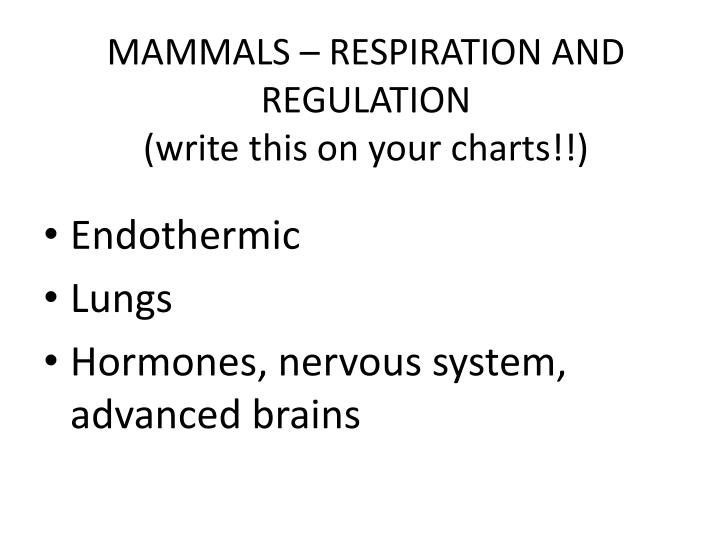 MAMMALS – RESPIRATION AND REGULATION