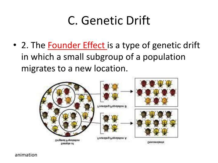 C. Genetic Drift