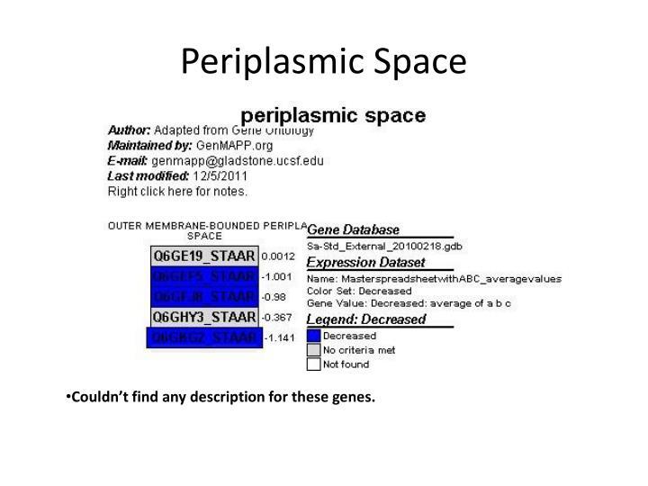 Periplasmic