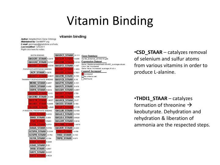 Vitamin Binding