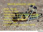 second consumer locusts
