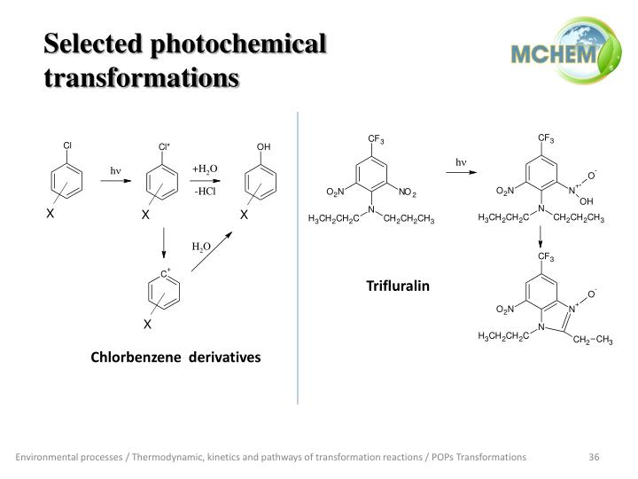 Selected photochemical transformations