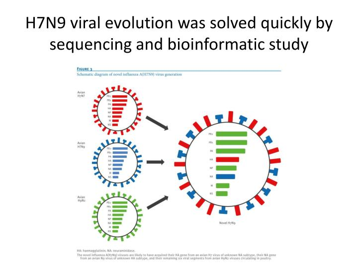 H7N9 viral evolution was solved quickly by sequencing and
