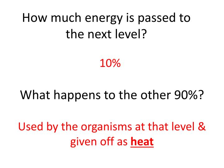 How much energy is passed to the next level?