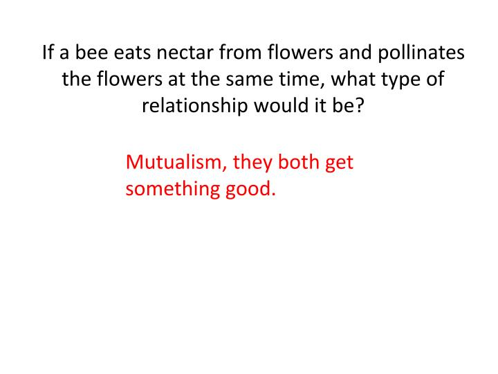If a bee eats nectar from flowers and pollinates the flowers at the same time, what type of relationship would it be?