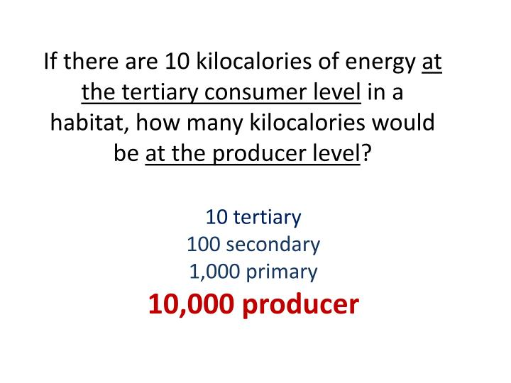 If there are 10 kilocalories of energy