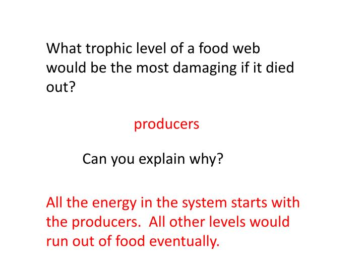 What trophic level of a food web would be the most damaging if it died out?
