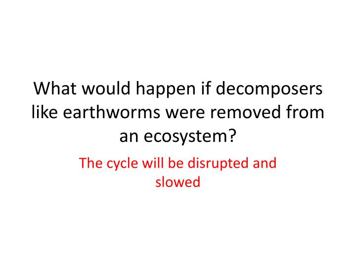 What would happen if decomposers like earthworms were removed from an ecosystem?