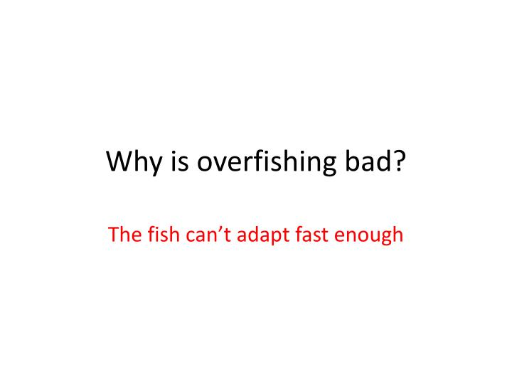 Why is overfishing bad?