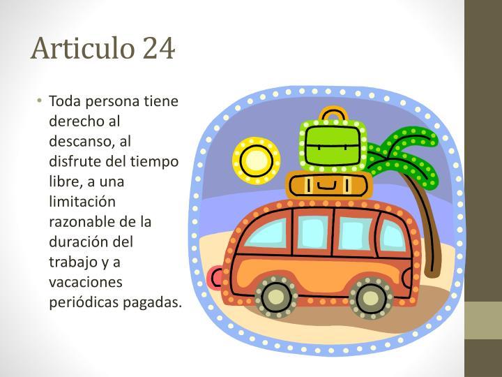 Articulo 24