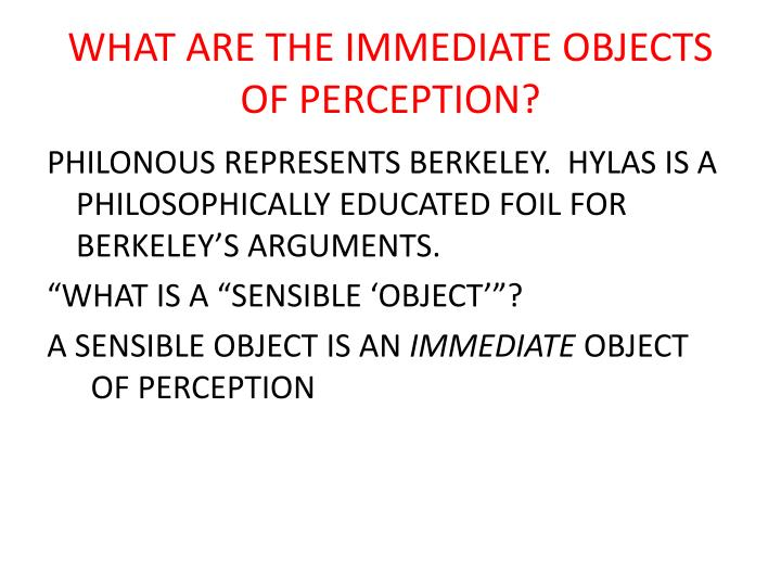 What are the immediate objects of perception