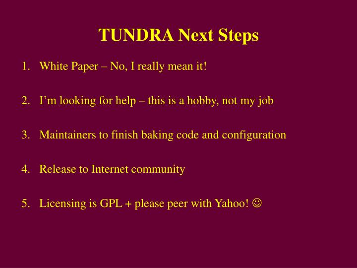TUNDRA Next Steps