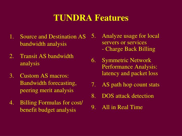 Tundra features