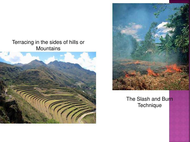 Terracing in the sides of hills or Mountains