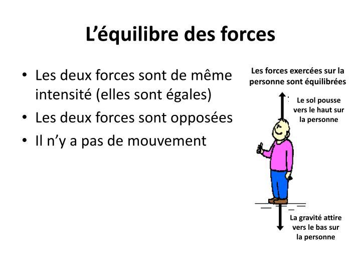 L'équilibre des forces