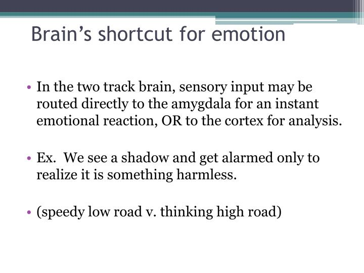 Brain's shortcut for emotion