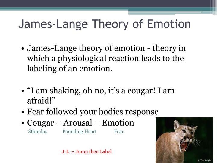 James-Lange Theory of Emotion