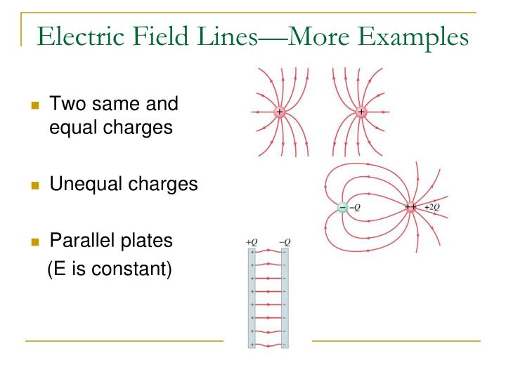 Electric Field Lines—More Examples