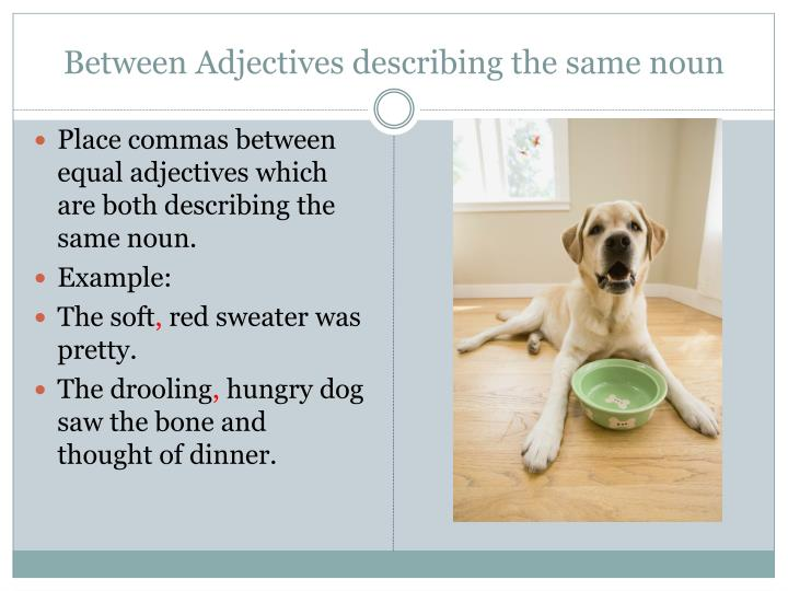 Between Adjectives describing the same noun