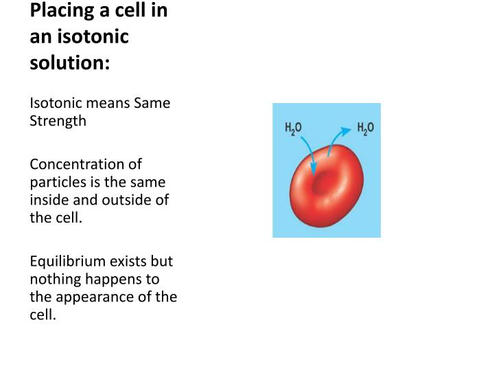Placing a cell in an isotonic solution
